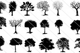 Tree Silhouette Vector SVG Cut Files, PNG and JPG Illustration – 75 Graphics