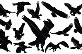 Flying Eagle Silhouette Vector (14)