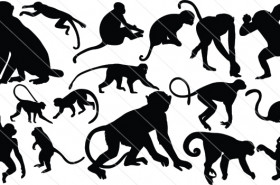 Monkey Silhouette Vector (16)