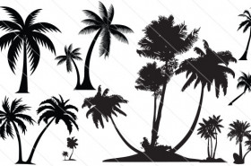 Coconut Tree Silhouette Vector (10)
