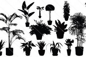 Potted Plants Silhouette Vector (15)