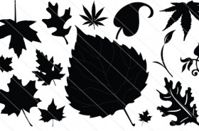 Leaf Silhouette Vector (14)