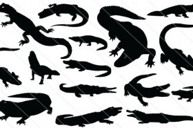 Alligator Silhouette Vector (15)