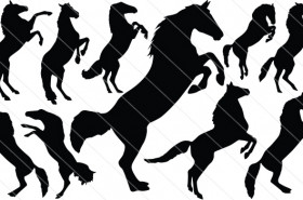 Horse Jumping Vector Graphics
