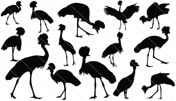 Crowned Crane Silhouette Vector (14)