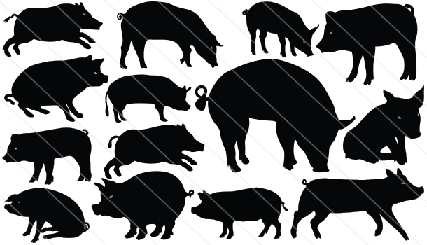 Pig Silhouette Vector (14)