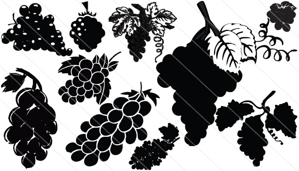 Greap Silhouette Vector (10)