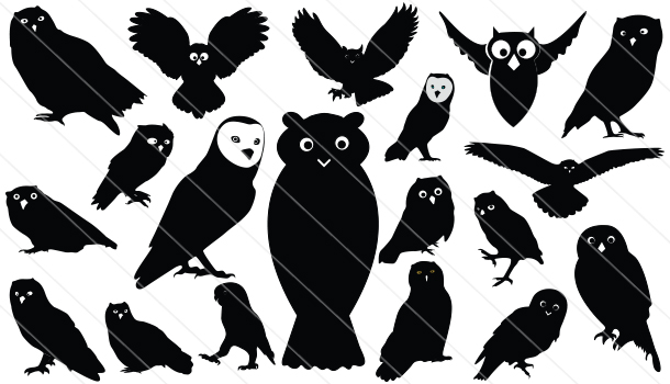 Owls Silhouette Vector (19)