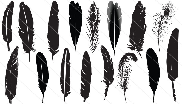 Feather Silhouette Vector (16)
