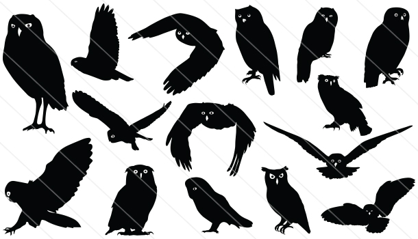 Owl Silhouette Vector Graphics