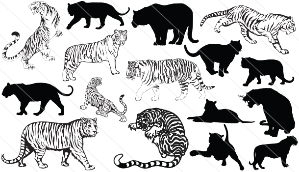Tiger Silhouette Vector Graphics