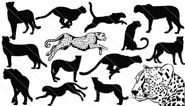 Cheetah Silhouette Vector Graphics