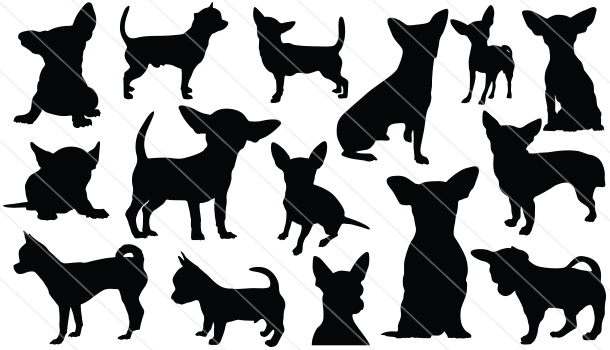Chicuahua Silhouettes Vector Graphics